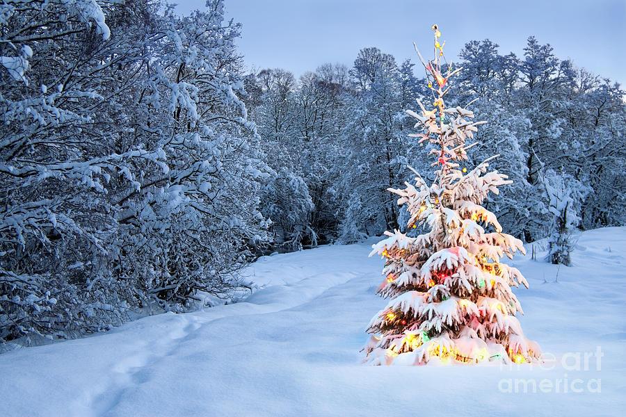 Kolik Vánoc nám ještě zbývá?