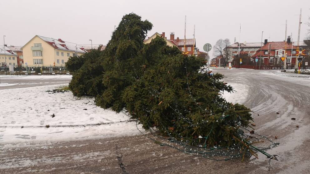 Ve švédském chalífátu se už ničí vánoční stromky v ulicích