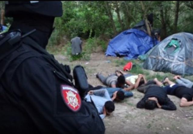 Srbská policie objevila zbraně v táboře, kde pobývají ilegálové na cestě do Evropy (video)