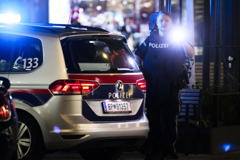 Vídeň: Somálec s dlouhým trestním rejstříkem ubodal dvě své krajanky