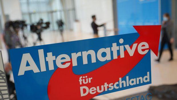 Volby v Německu: V Sasku a Durynsku vyhrála AfD