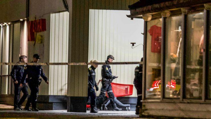 Norsko: Pět mrtvých a dva zranění po útoku lukem a šípy – útočil konvertita k islámu